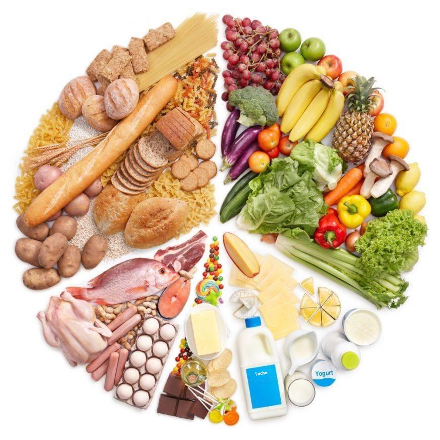 tipos_dietas